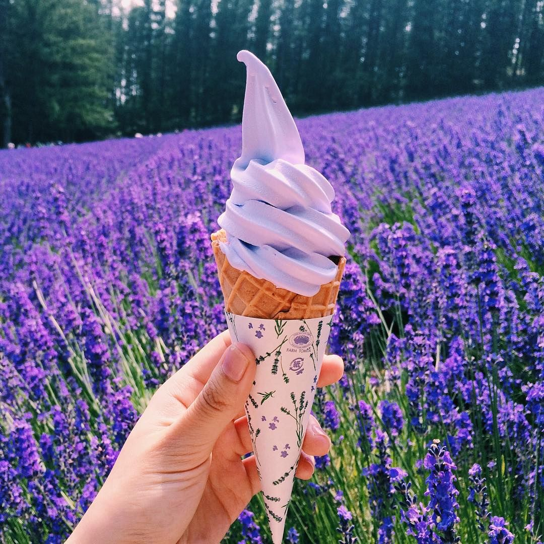 """Lavender Ice Cream In The Lavender Fields. """