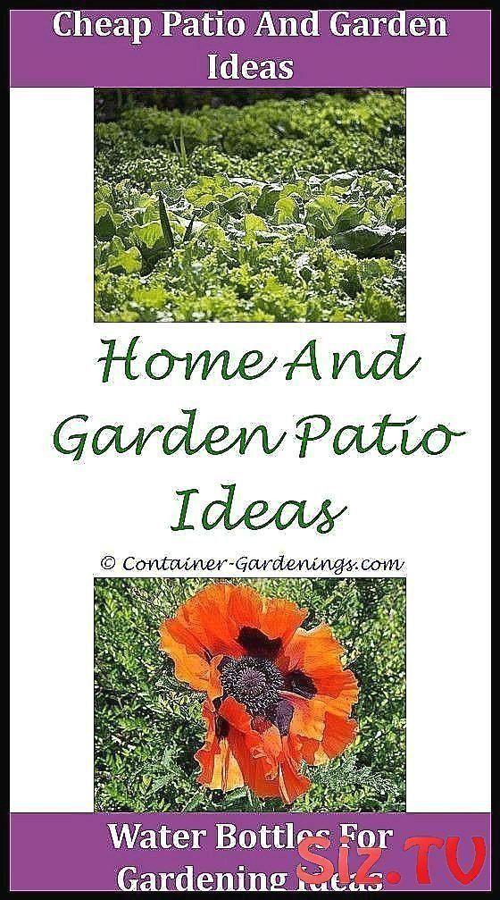 Gardening For Beginners Gardening For Beginners Gargen ...