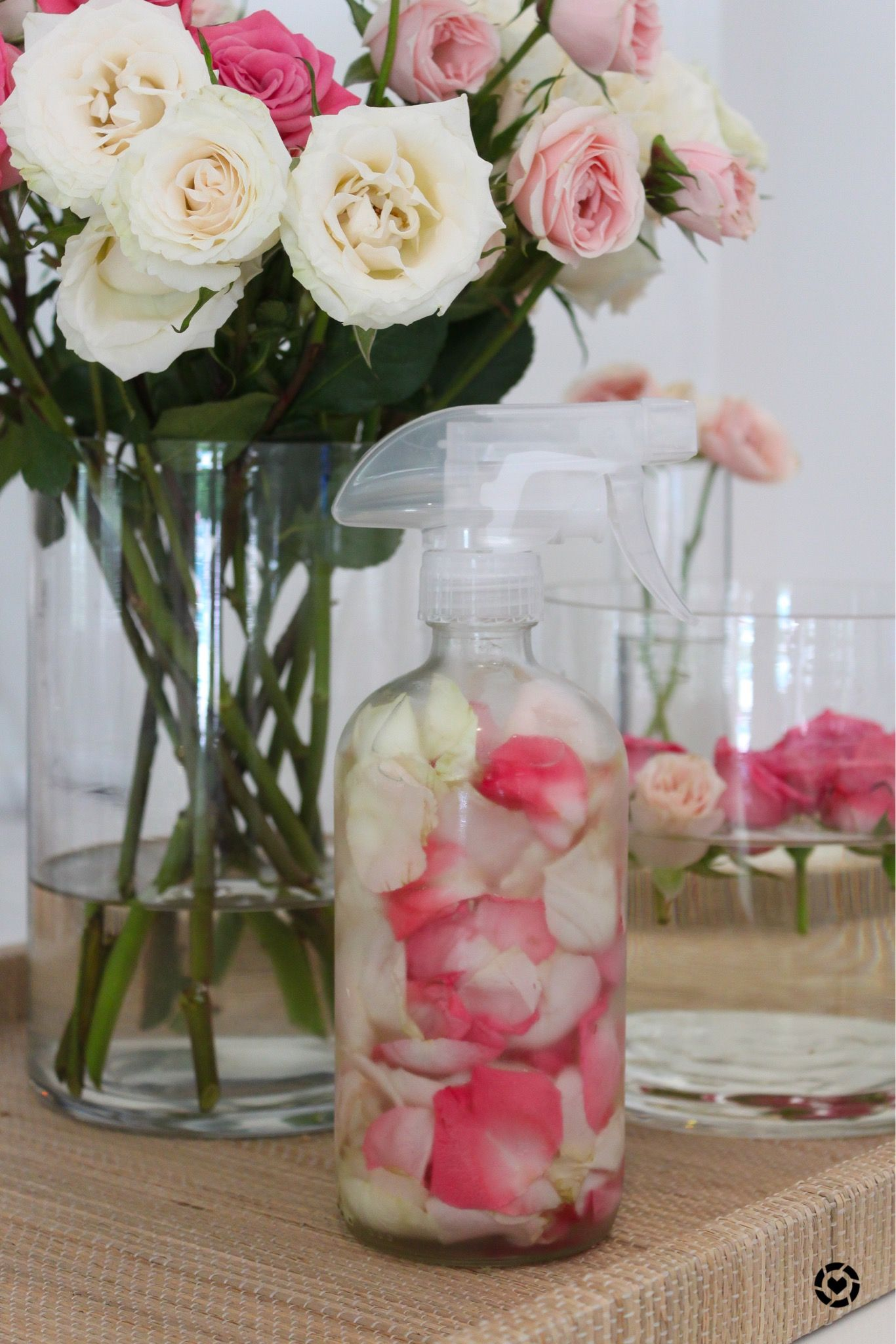Rose Water turorial. Anti-inflammatory and anti-septic properties of rose water make this a great natural home ready thats so easy to make! Just need Roses + Water!! #diy #recipe #naturalremedies #naturalbeauty #naturalbeautyproducts #naturalbeautytips #organicbeauty #organicskincare #organicproducts #rosewatertoner #athomebeauty