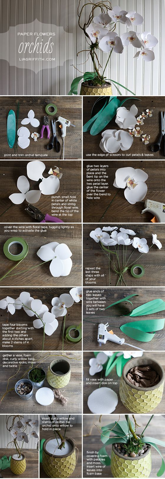 Make a Gorgeous Paper Orchid Plant  Diy paper Orchid and Tutorials