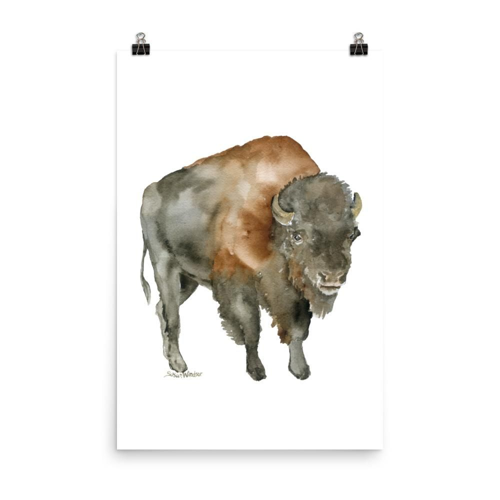 Buffalo Bison Watercolor Print By Dean Crouser Buffalo Painting