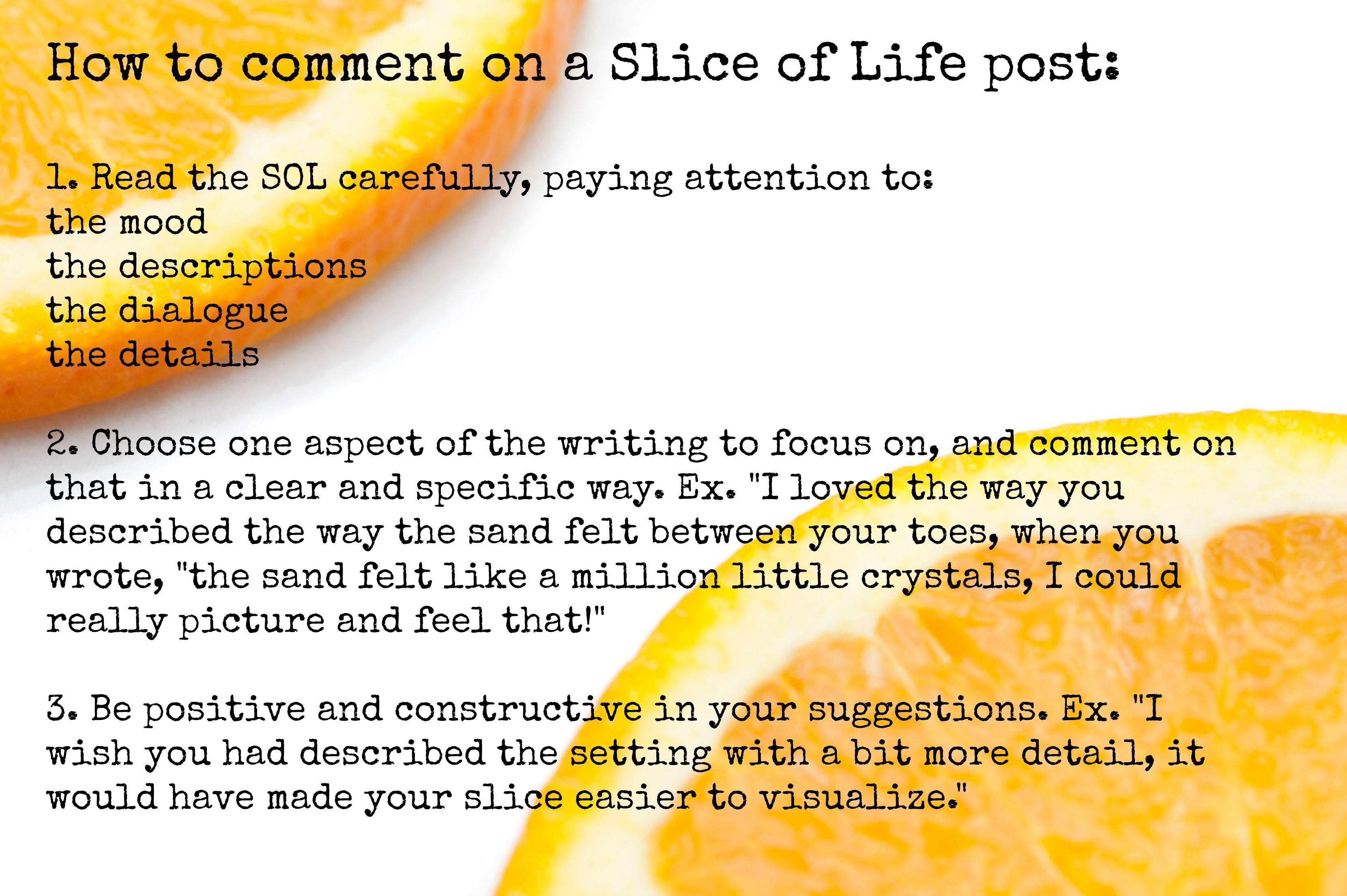 The Slice Of Life Project With A Twist
