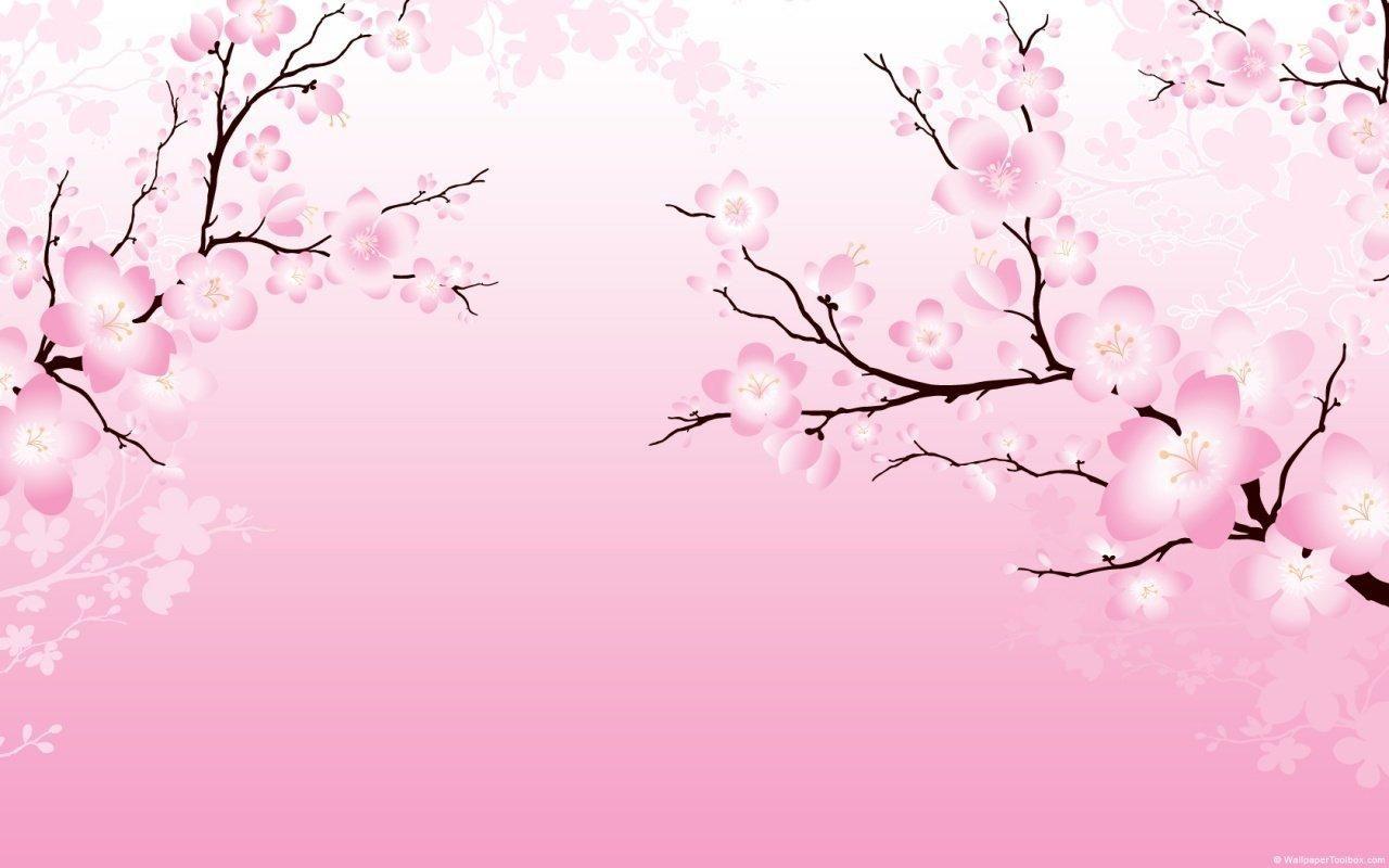 1280x800 Cherry Blossom Wallpaper Download Cherry Blossom Pictures Cherry Blossom Wallpaper Cherry Blossom Wedding Invitations
