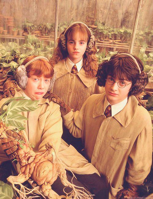Ron Hermione And Harry Harry Potter Film Harry Potter Lustig Harry Potter Sammlung