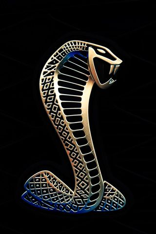 Shelby Gt Logo Shelby Pinterest Shelby Gt Logos And Mustang