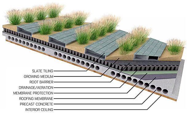 Design Thesis Project Jon Freeberg Archinect Roof Garden Green Roof Green Roof Design