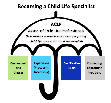 The Ultimate Guide To Becoming A Ccls Child Life Cooperative Child Life Specialist Child Life Student Resources