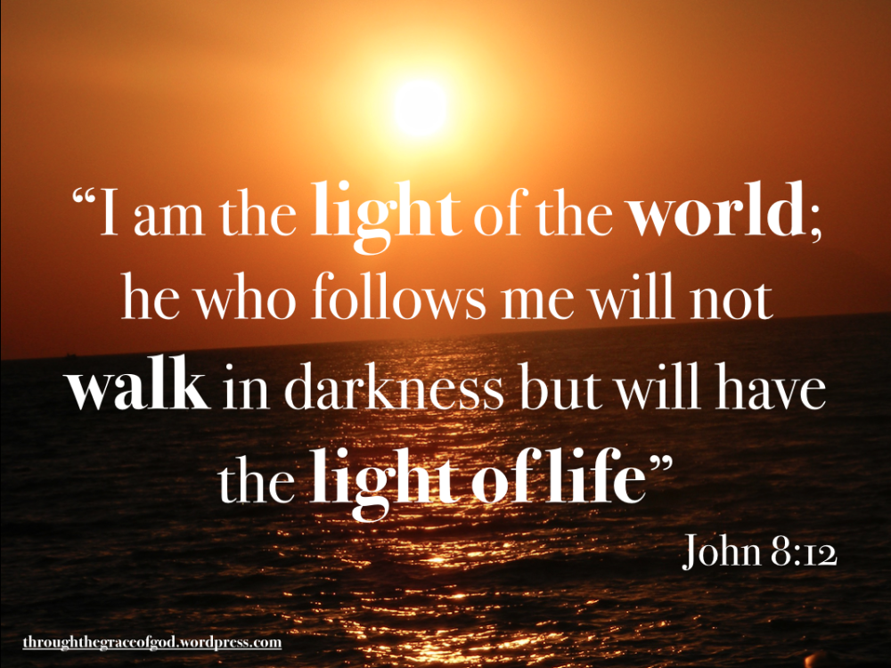"""""""I am the light of the world; he who follows me will not walk in darkness but will have the light of life"""" – John 8:12 #Christianity #bible #biblequotes #gospelofjohn #john8_12 #godsword"""
