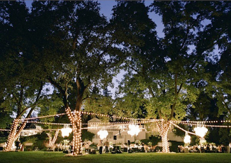 Outdoor Fairy Lighting Fairy lights wedding style inspiration lane faith hope and i definitely want light strands outdoor fairy workwithnaturefo