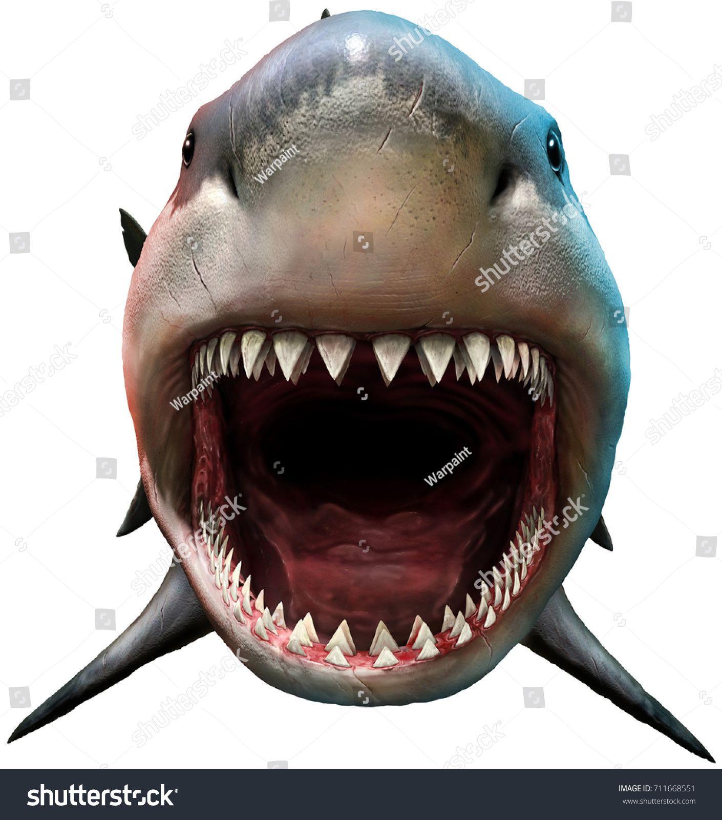 Shark Biting 3d Illustrationshark Biting Illustration Great White Shark Drawing Megalodon Shark