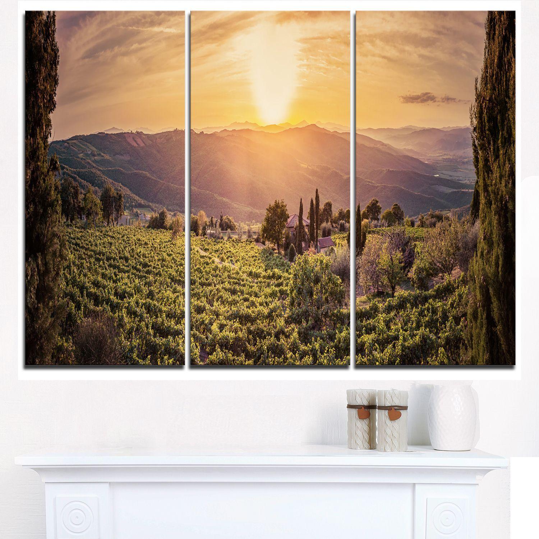 Vine Farm at Sunset Tuscany Panorama - Landscape Art Print