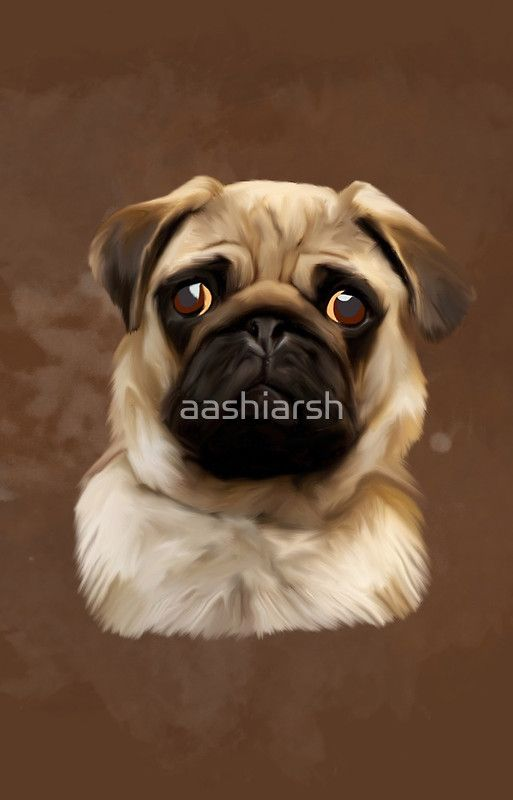 #Pug #Dog Water Color #Art #Painting #animal #pet
