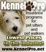 Professional Pet Sitting Rates In Ct Pet Sitting Dog Sitting Pet Sitters