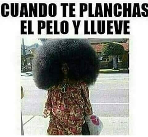 Meme Humor Maldita Primavera Marzo Frio Viento Cdmx Mexico Memes Lindos Memes De Frio Memes Espanol Graciosos