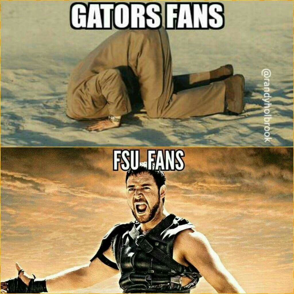 Pin by PJ Corless on Florida Gator Memes Fsu seminoles