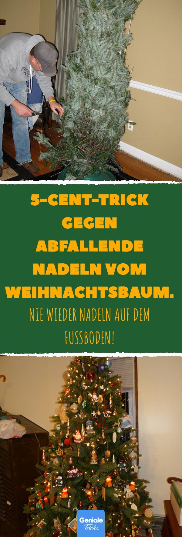 5-Cent-Trick gegen abfallende Nadeln vom Weihnachtsbaum. #weihnachtsbaum #tipps #tricks #nadeln #lifehacks #tannenbaum #nordmanntanne