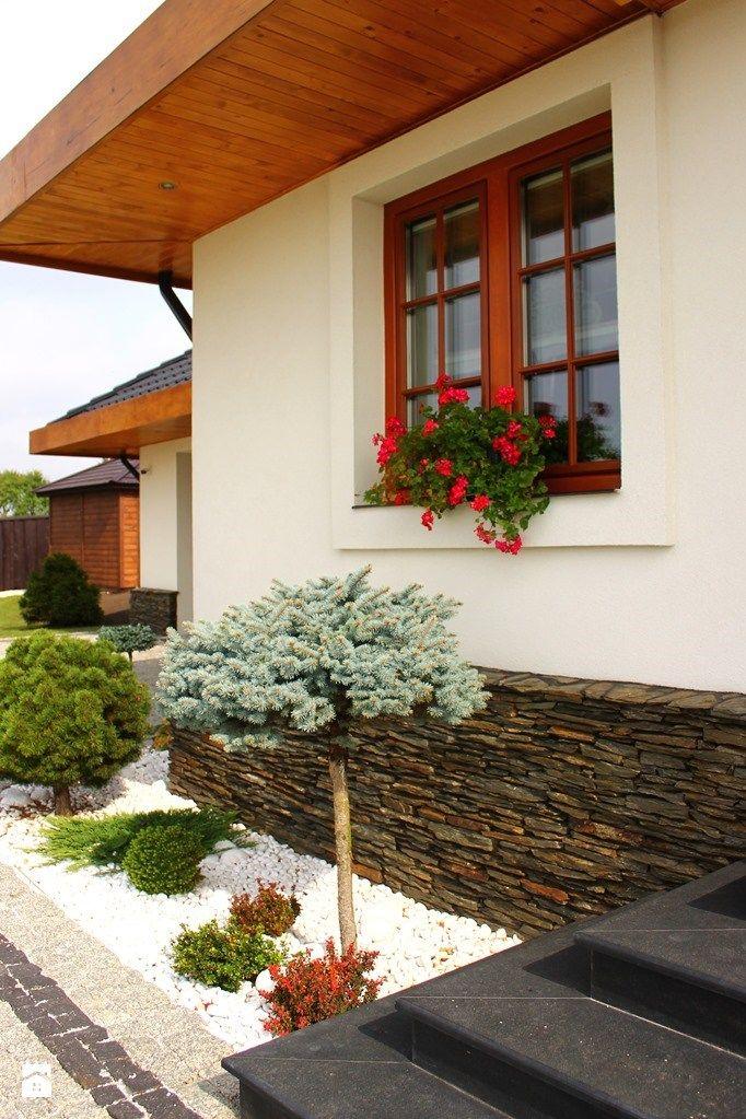 Okna średni Ogród Przed Domem Zdjęcie Od Stolbud Włoszczowa Sa
