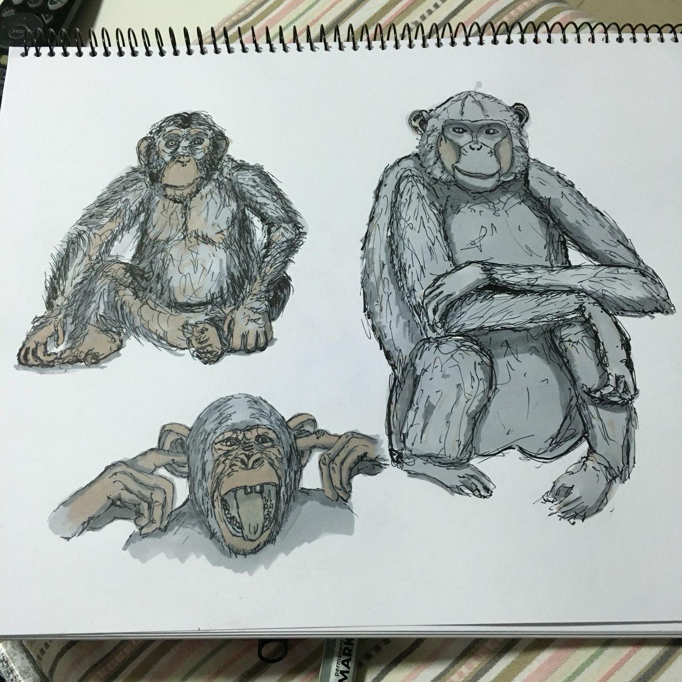 monkeys page ink pen marker promarker sketch drawing