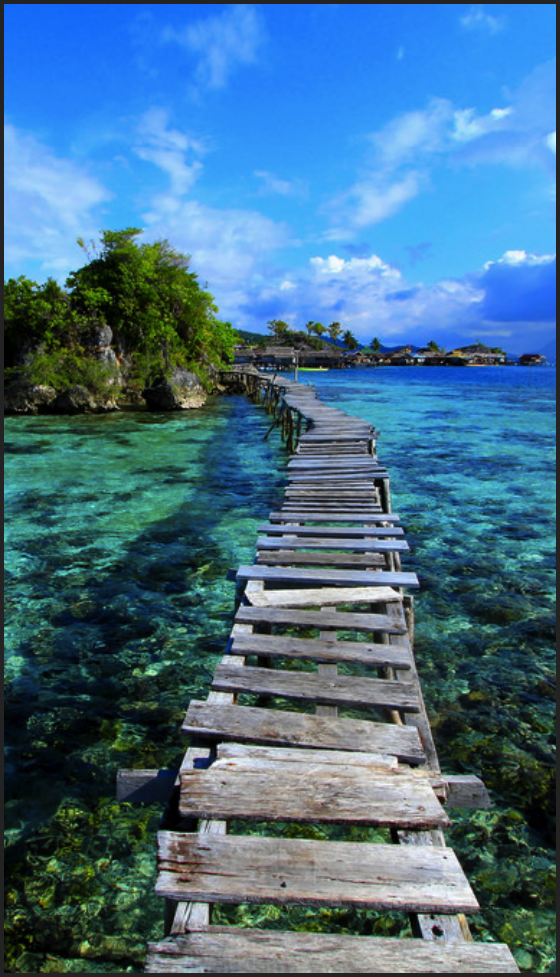 I'm in love. Walking over coral reefs in the Togean Islands, Indonesia.