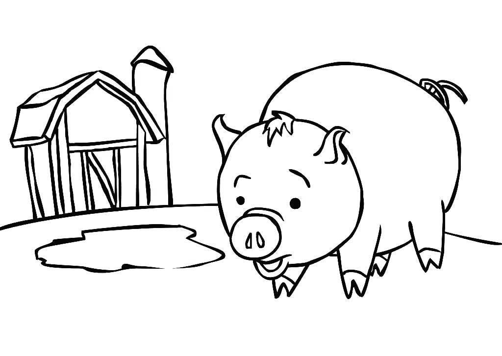 Flying Pig Coloring Pages Pig Coloring Pages Flying Pig Coloring