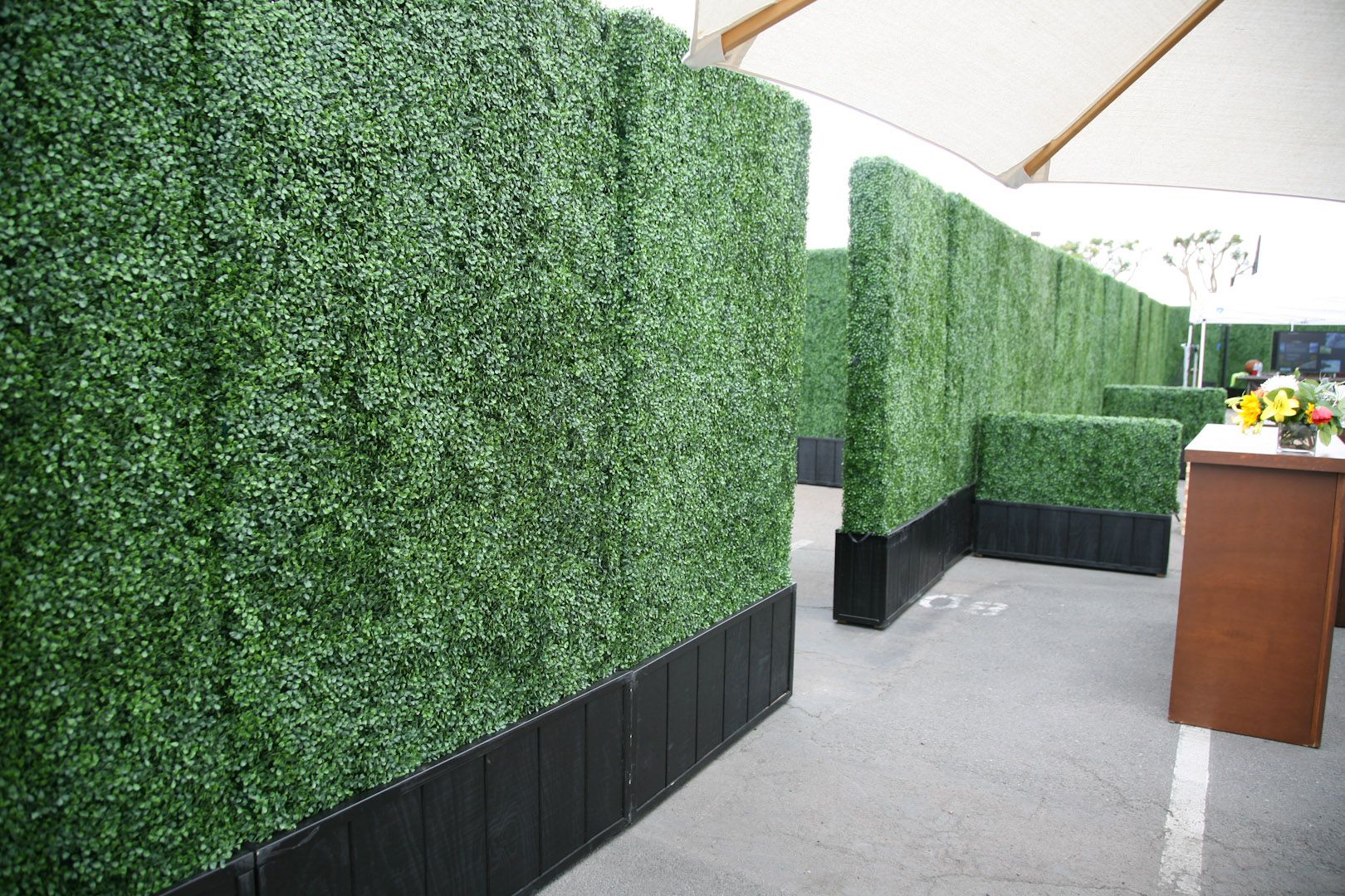 Boxwood Hedge Panels 4 X 8 A1 Party Rental Small Artificial Plants Artificial Grass Wall Cheap Artificial Plants