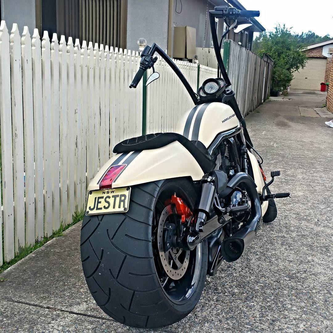 Vrod Nightrodspecial Muscle Harley Harleydavidson Harleylife
