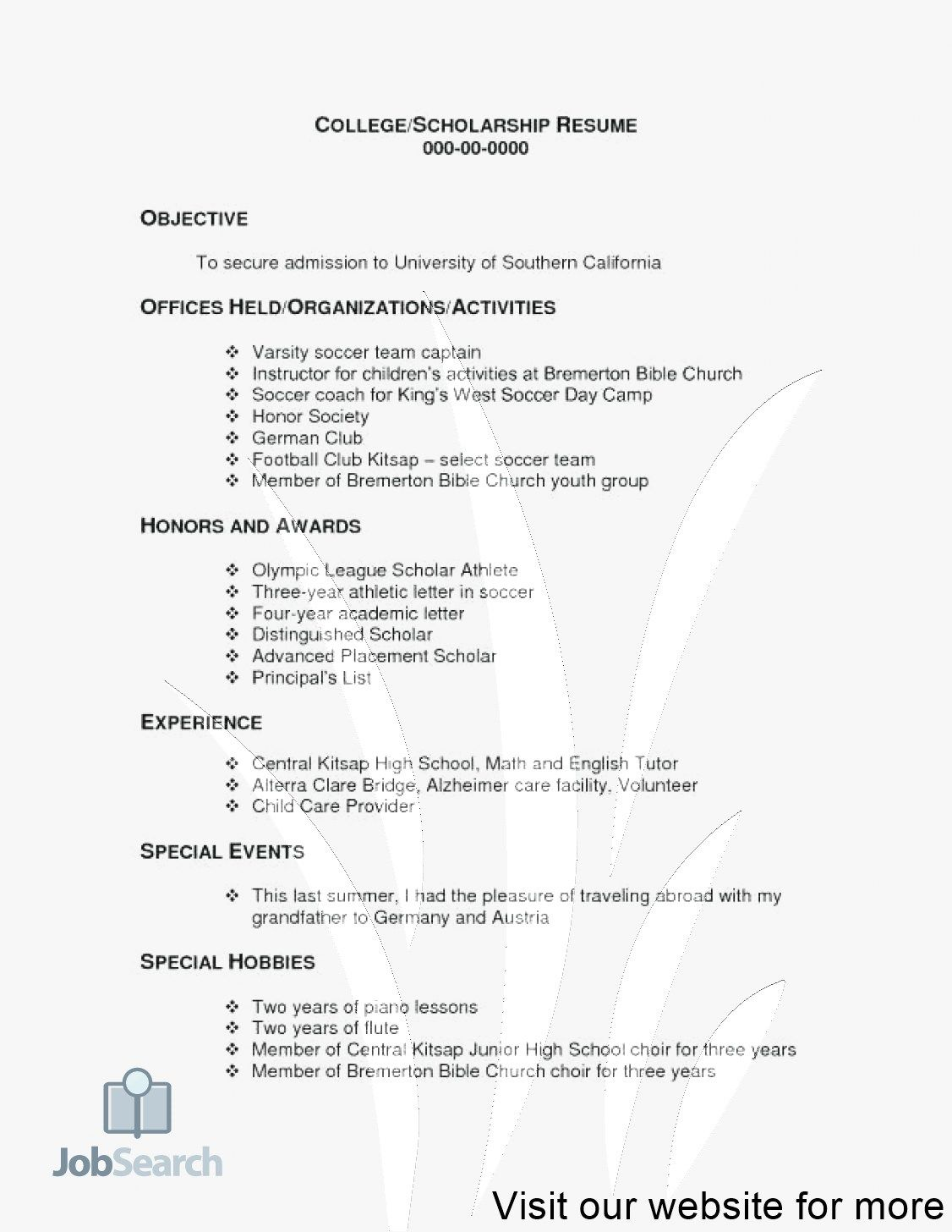 resume examples word Professional in 2020 Resume