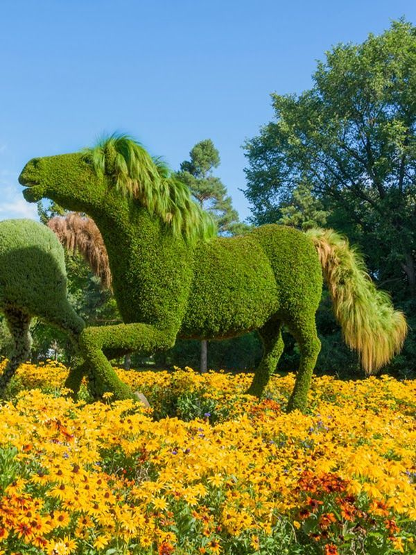 Amazing Montreal Botanical Garden