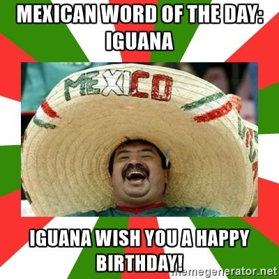 ba8c32f090c4a3e8efb3188c88007801 sombrero mexican mexican word of the day iguana iguana wish you