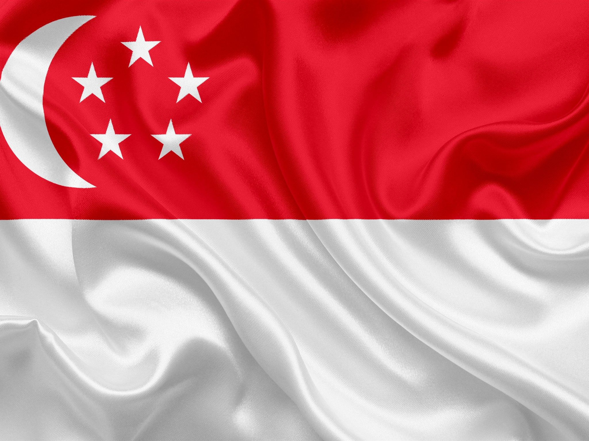 Flag Of Singapore In 2020 Singapore Flag Singapore National Day Singapore