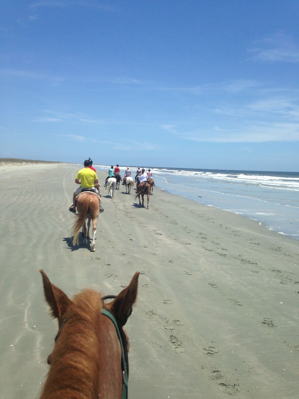 Schedule some chill time and go horseback riding}* Inlet Point ...