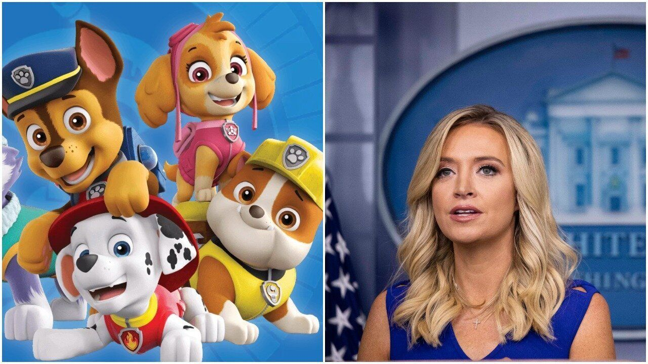 Paw Patrol Fact Checks Kayleigh Mcenany After She Said Show Was Canceled Huffpost In 2020 Kayleigh Mcenany Fact Checking Paw Patrol