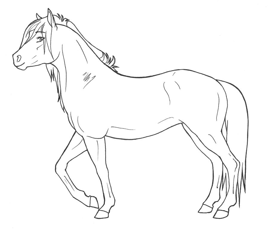 Kleurplaten Paarden Gratis.Kleurplaat Paard Google Zoeken Kleurplaten Flores