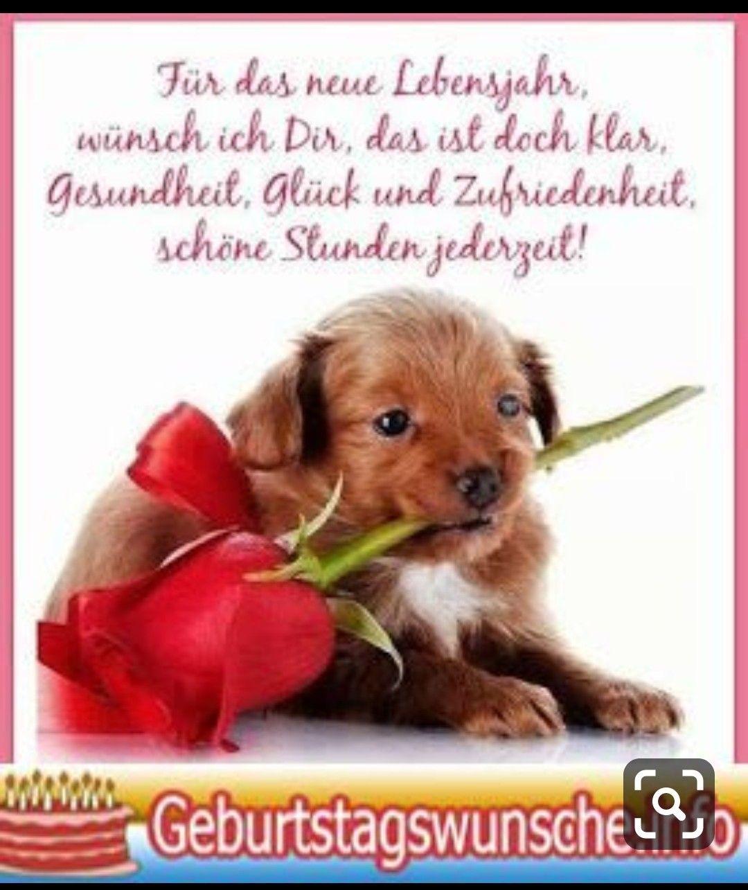 Bunte Geburtstagskarte Mit Gedicht Zum Geburtstag Und Hund
