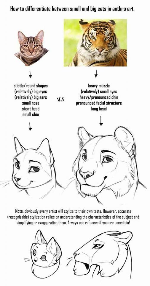 como desenhar felinos como desenhar passo a passo pinterest