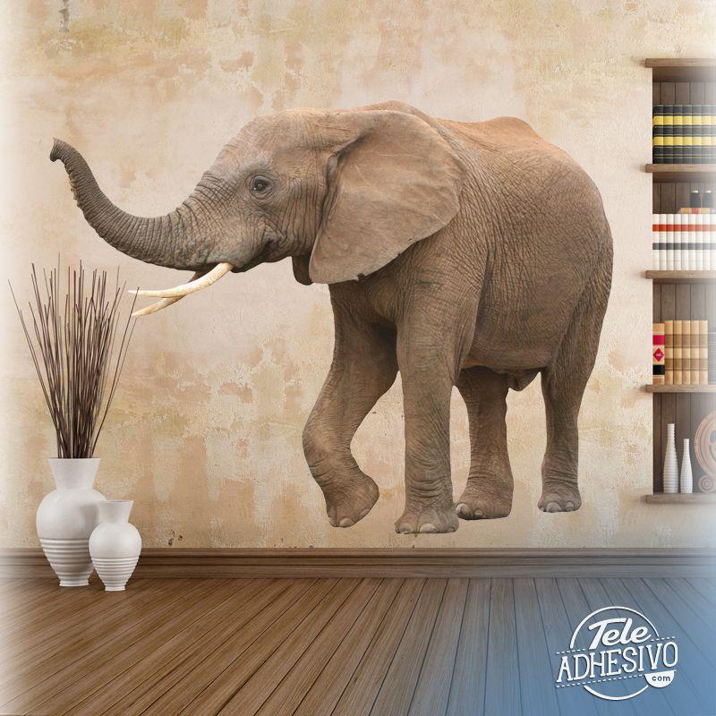 Vinilos Decorativos: Elefante africano #elefante #animales ...