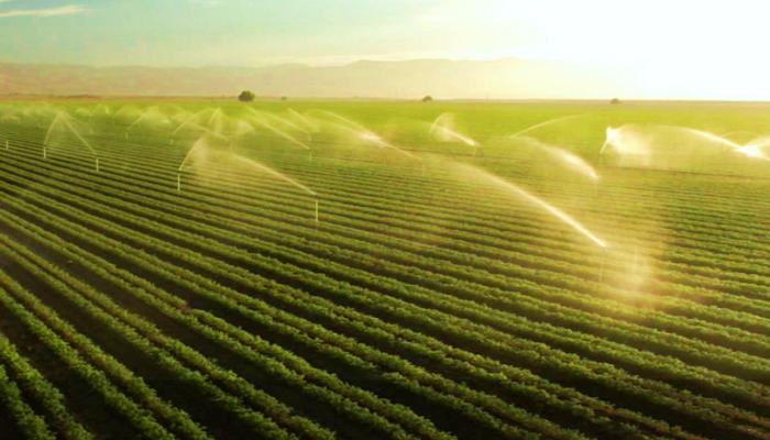 Riego Agua Para Los Cultivos Agricultura Y Jardinería Métodos De Riego Riego Agricultura Jardinería