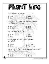 Image result for 3rd grade science plants worksheets