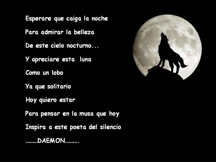 Imagenes De Soledad De Mujeres: Hunter13: Lobo Luna