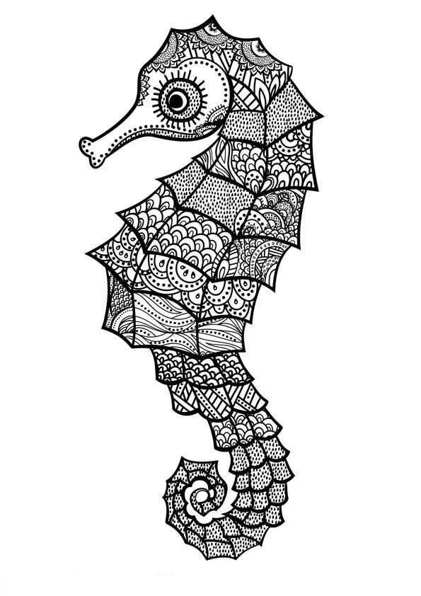 Zeepaardjes Kleurplaat Art Pinterest Mandala Coloring Pages