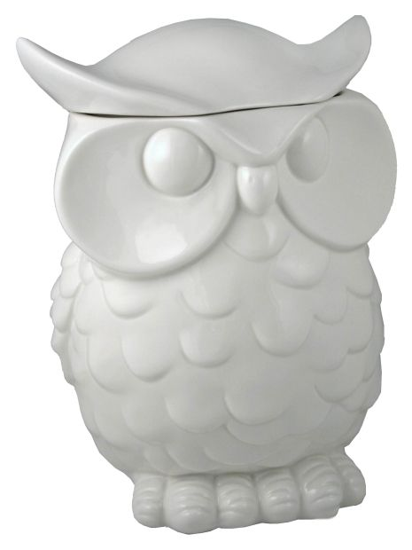 Owl Ceramic Cookie Jar 33 19 This A A Great Gift From One Teacher To Another A Wise Owl Is Perfect For A Cla Owl Cookie Jar Ceramic Cookie Jar Owl Kitchen