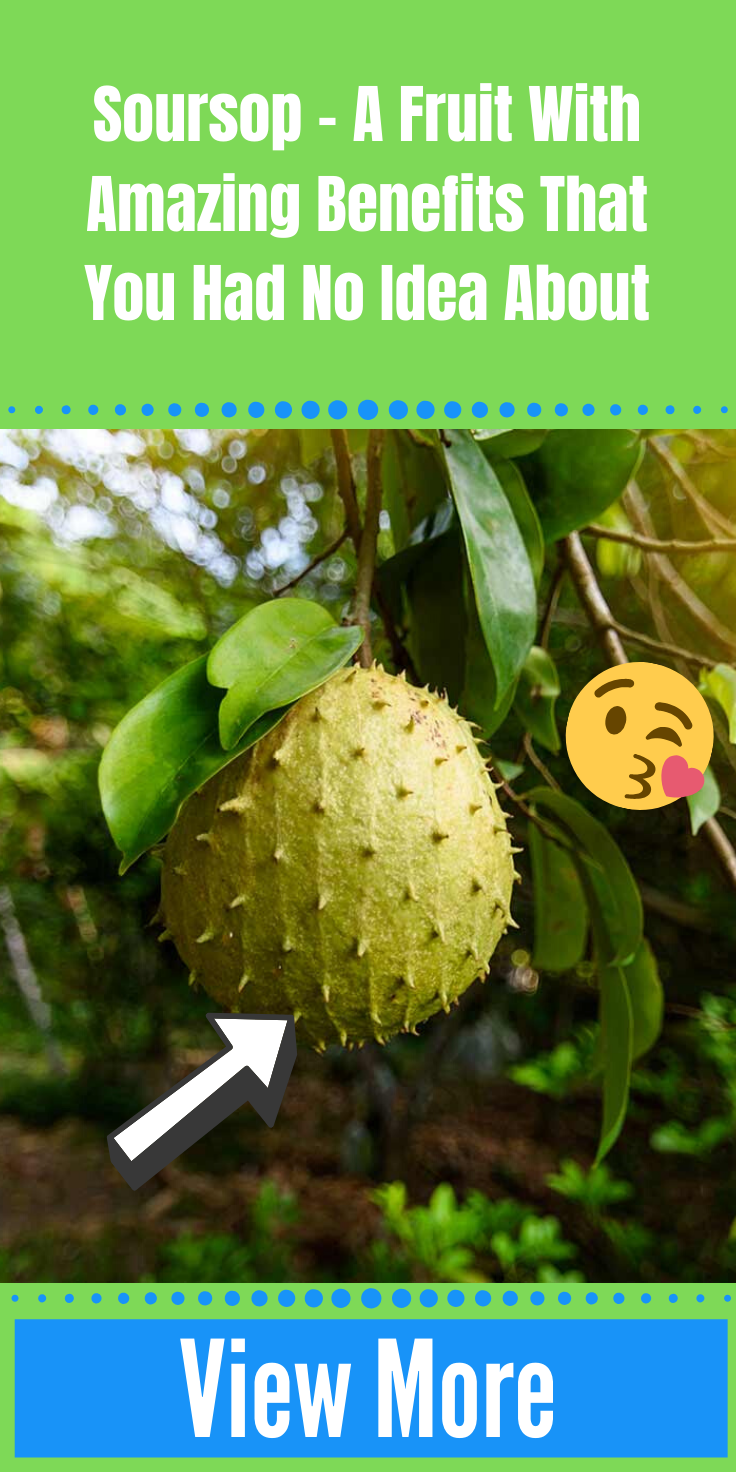 Soursop – A Fruit With Amazing Benefits That You Had No Idea About  #idealproteinrecipesphase1dinner