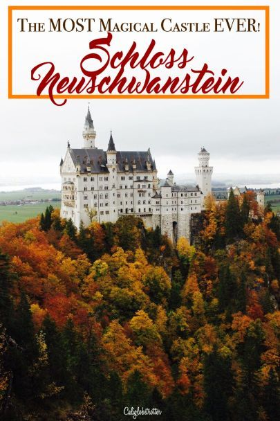 Schloss Neuschwanstein Places To Visit Visit Germany Cool Places To Visit