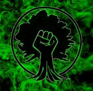 Green Anarchy Anarquismo Punk Portadas