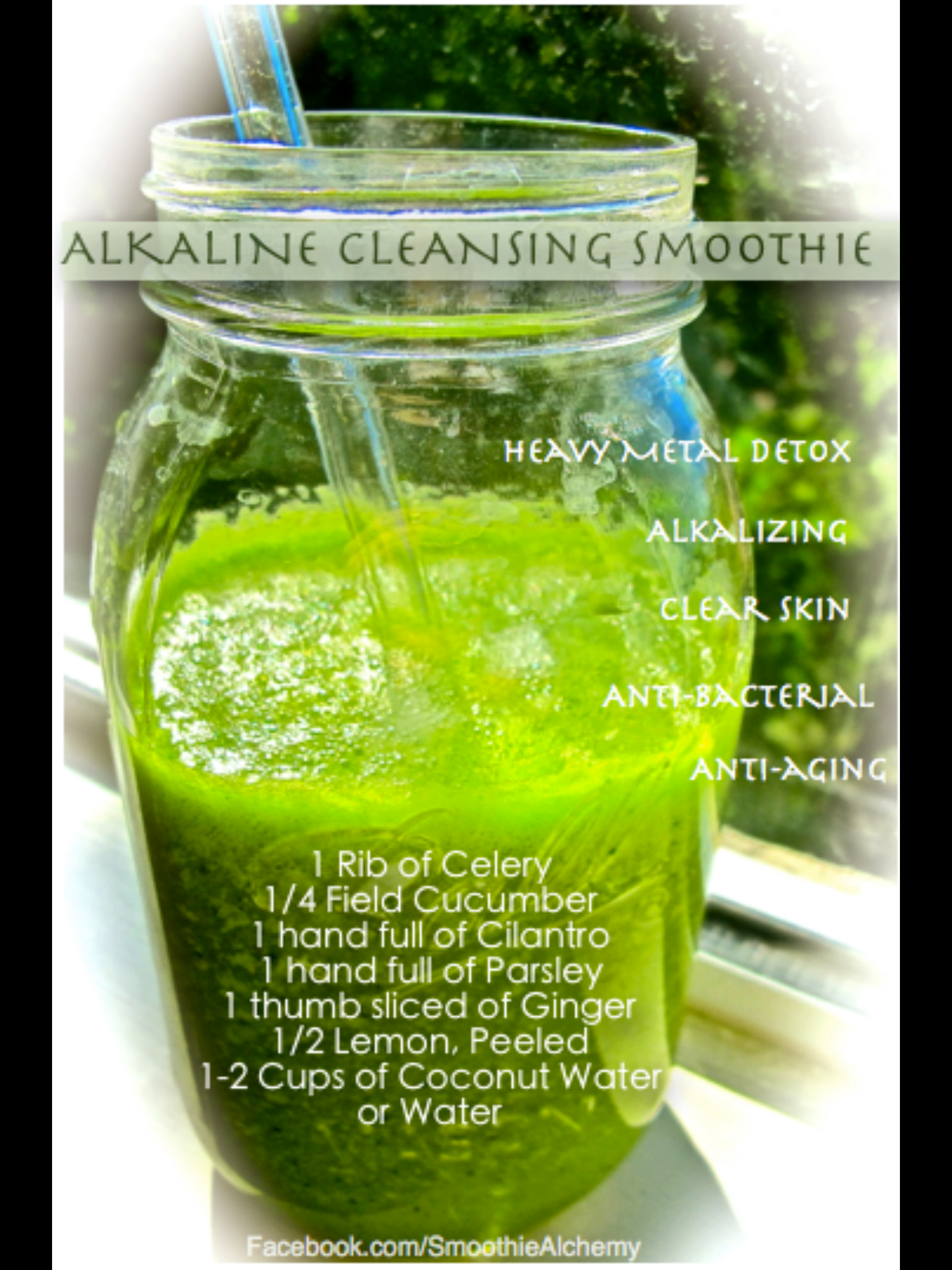 Alkali Yeşil Detoks Tarifi