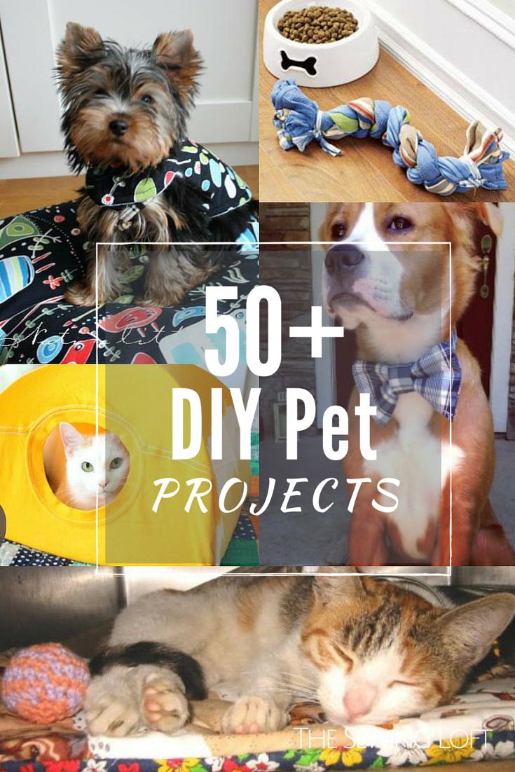 50+ DIY Pet Projects   Hund katze, Diy nähen und Nähprojekte