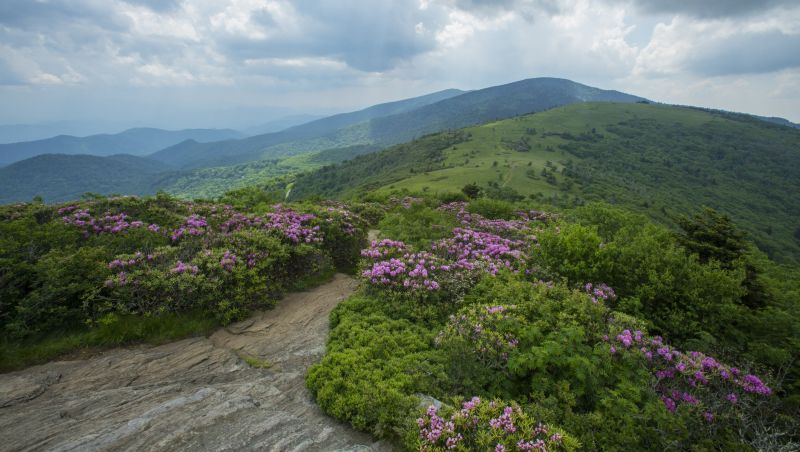 Image result for north carolina mountain spring days