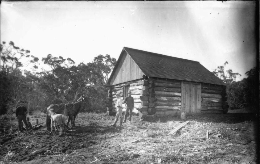 Photo 1885 Village at Laupahoehoe Hawaii