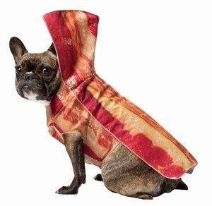 Rudy can wear the bacon and I will wear an egg costume!!!!! Bacon Dog Costume & Matching Human Costumes - Costumes Posh Puppy Boutique