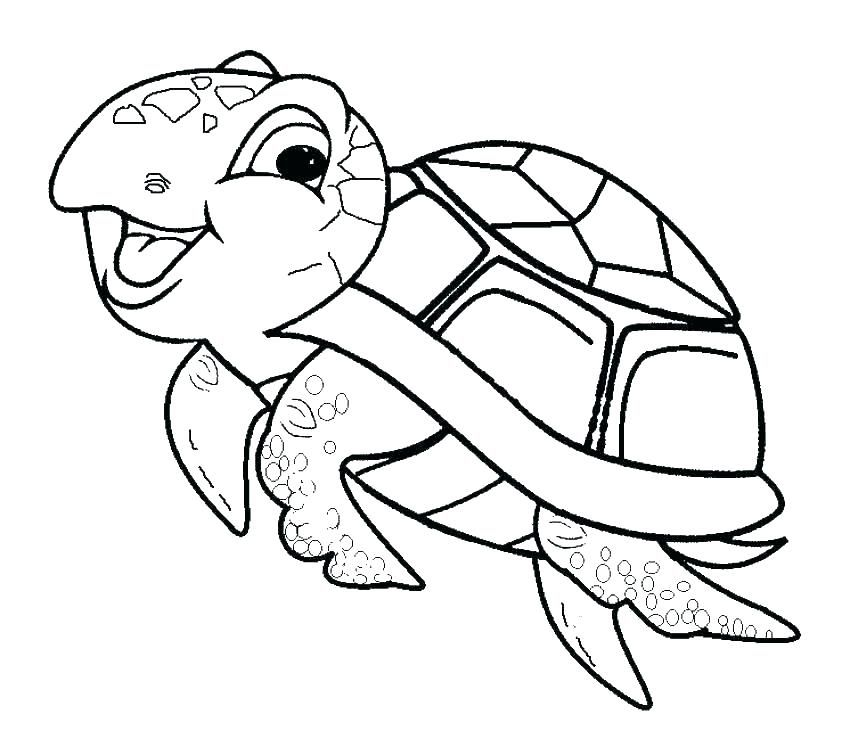 Image Result For Reptile Colouring Pages Turtle Coloring Pages Turtle Drawing Sea Turtle Drawing